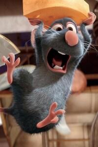 480x800 Ratatouille Movie