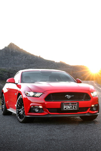 480x854 Red And Blue Ford Mustang