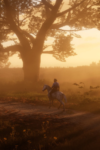 480x854 Red Dead Redemption 2 The Path 5k