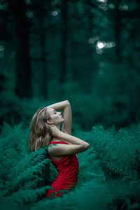 Red Dress Girl In Forest