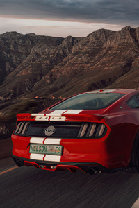 2160x3840 Red Ford Mustang 50 Gt Race Rear 5k
