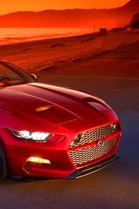 Red Mustang 5k
