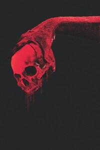 1080x1920 Red Skull