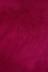 Red Smooth Fur Texture Abstract 4k