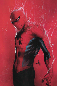 Red Spider Man 2020 New