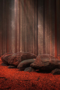 800x1280 Red Stones Wood Light Beams 4k