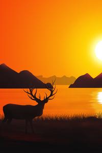 Reindeer Landscape Scenery