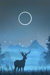 640x960 Reindeer Minimalism Art 4k