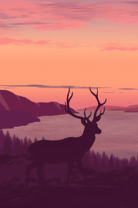 1080x1920 Reindeer Minimalist Call Of Sunset 4k