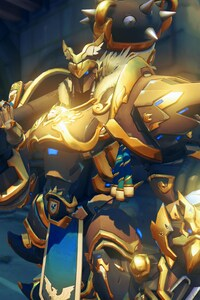 720x1280 Reinhardt In Overwatch