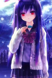 360x640 Reisen Udongein Inaba Anime Girl 4k