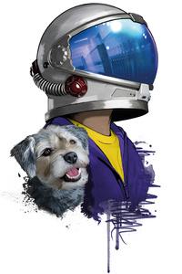 Rider Helmet Dog Minimal 5k