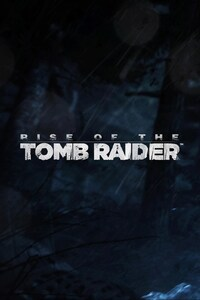 750x1334 Rise Of The Tomb Raidel Artwork 2