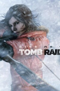 750x1334 Rise Of The Tomb Raider Game 2