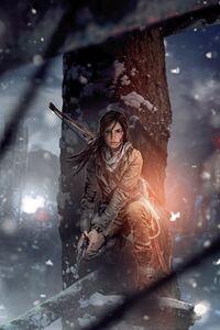 640x960 Rise Of The Tomb Raider Lara Croft