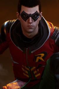 Robin Gotham Knights 2021 Game