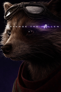 Rocket Raccoon Avengers Endgame 2019 Poster