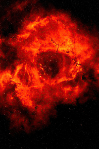 540x960 Rose Nebula 4k