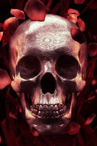 Rose Petal Skull