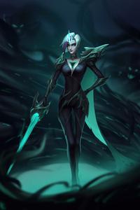 640x960 Ruined Legion Sword Princess