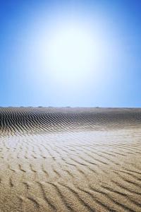Sahara Desert 5k