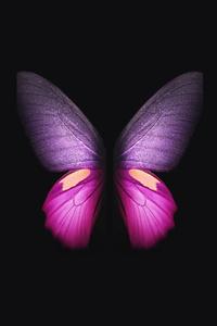 1080x2160 Samsung Galaxy Fold Butterfly