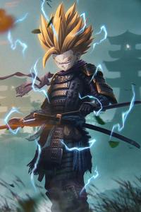 1080x2280 Samurai Son Gohan
