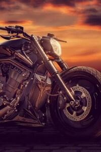 750x1334 Sandra Dombrovsky Bike