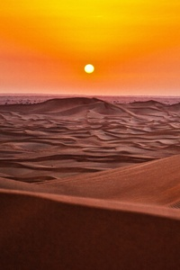 Sandscape 5k