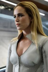 Sara Lance And Arrow