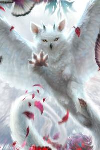 Scatter Owl 4k