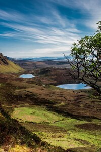 1080x2160 Scotland Trees Mountains Lake