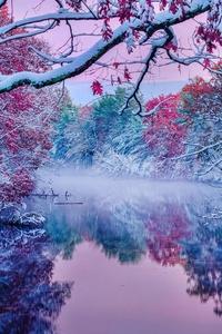 Seasons Colliding In Groton 5k