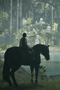 1080x1920 Shadow Of The Colossus 2018 PS4