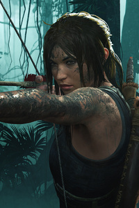 Shadow Of The Tomb Raider Hd