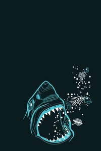 Shark Minimalism