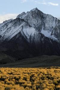 750x1334 Sierra Nevada Range In Summer