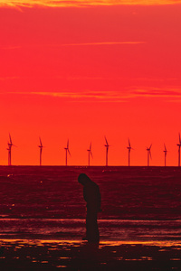 Silhouette Wind Turbines Sunset Horizon 5k