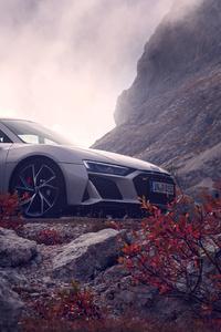 1280x2120 Silver Audi R8 2019