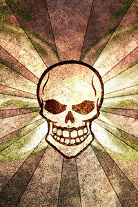 1080x2280 Skull Abstract Background