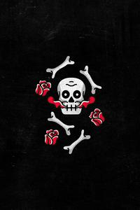 480x800 Skull And Roses Dark Minimal 4k