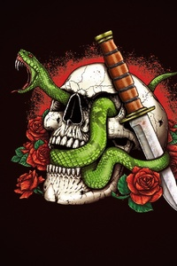 540x960 Skull And Snakes