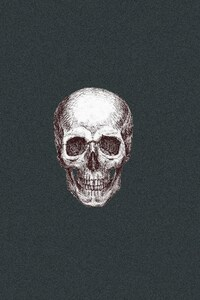 Skull Art 3