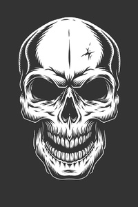 240x400 Skull Dark Hd