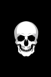 240x400 Skull Logo