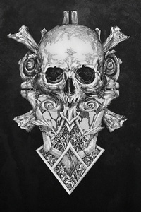 480x854 Skull Monochrome Dark Art