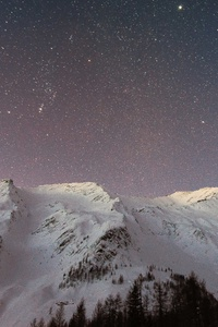 Snow Sky Stars Trees
