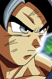 1242x2688 Son Goku 4k 5k