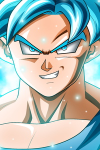 1242x2688 Son Goku Dragon Ball Super 12k