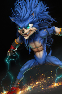 1242x2688 Sonic